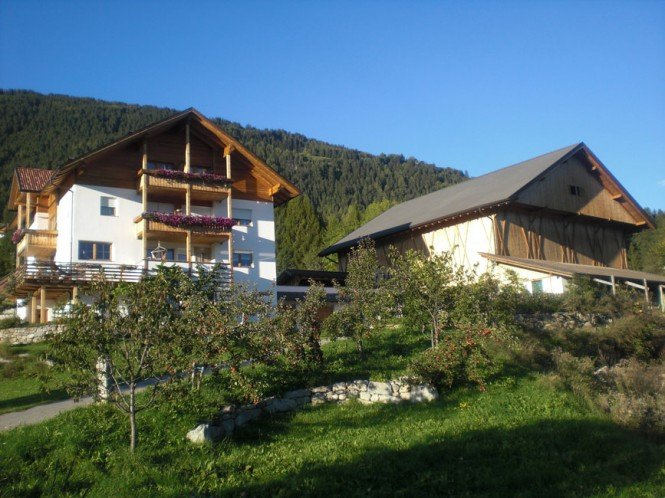 The Gasserhof farm in Falzes: for a farm holiday at Plan de Corones